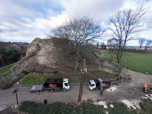 Aerial photography and videography for Tree Saw