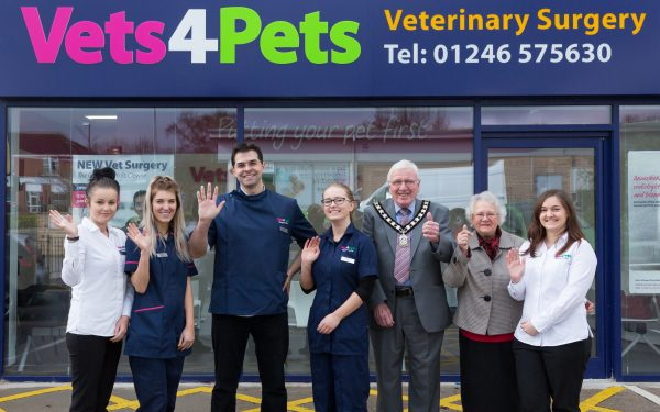 Vets4Pets Photography in Clowne